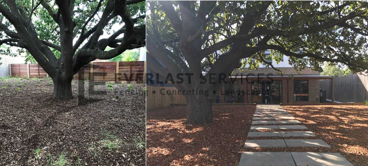 T77 - Backyard Landscape Before and After 2