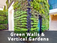 Green walls & Vertical gardens