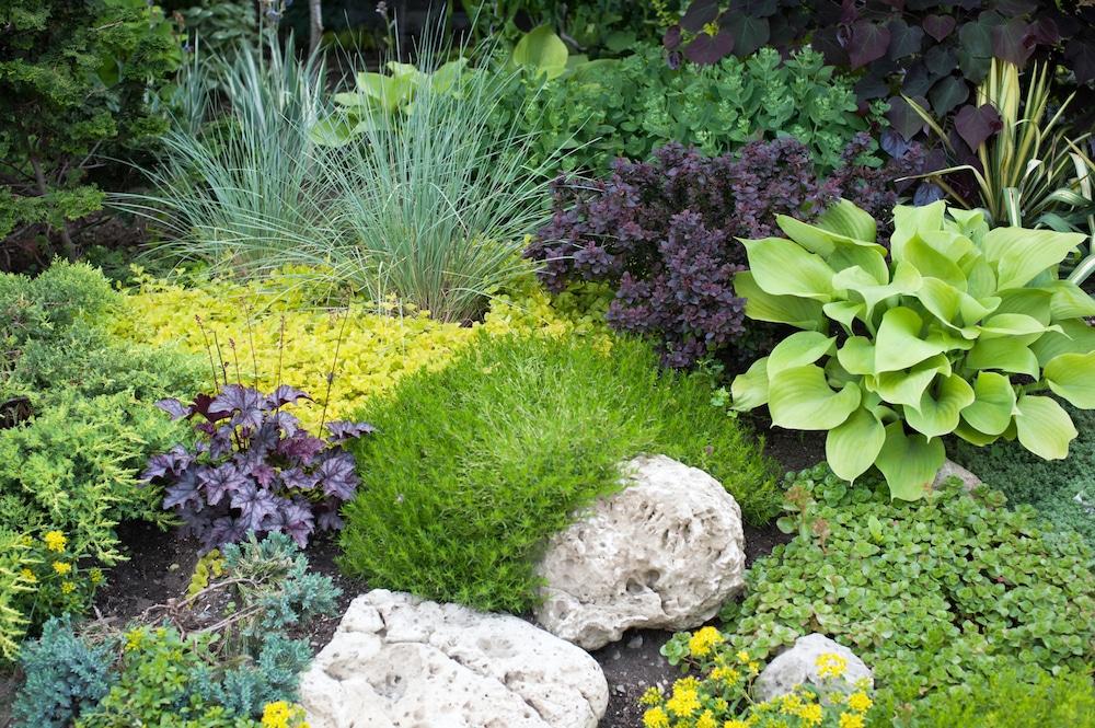 low maintenance gardens
