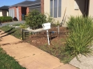 L62 – Front Yard Landscaping Before