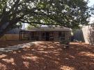 L64 – Backyard Mulch + Verandah