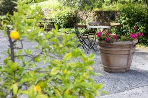 courtyards-landscaping-services