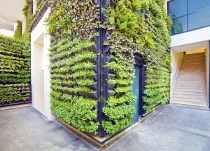 green walls vertical gardens