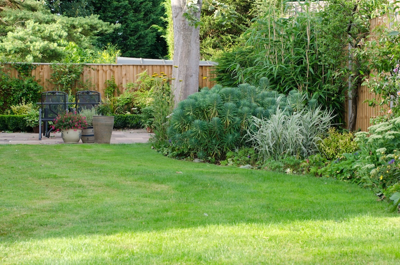 how to keep your garden green over summer