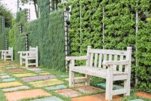 Tips & Tricks for Green Walls & Vertical Gardens