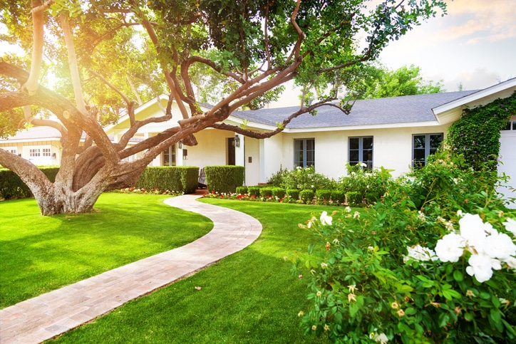things to consider when landscaping your yard
