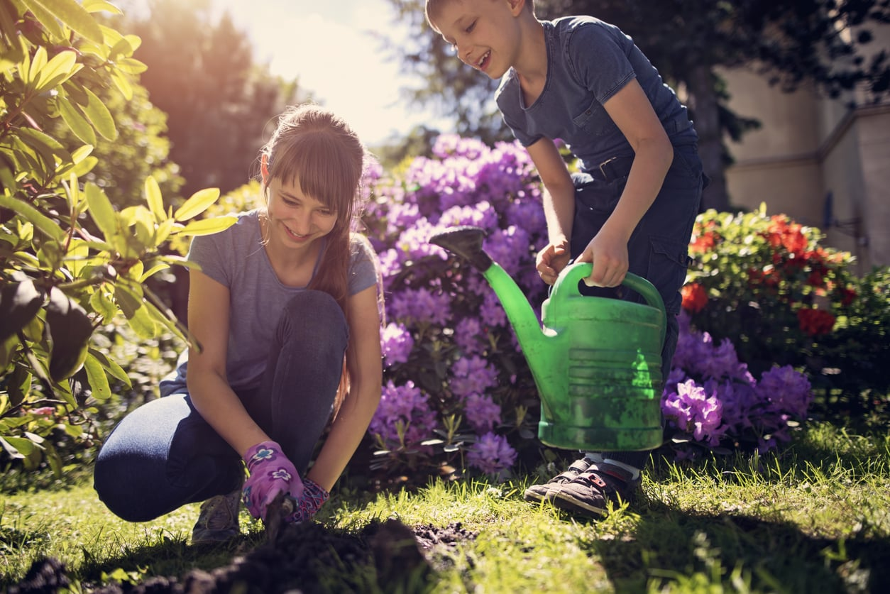 gardening tips for spring in melbourne