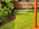 L229 – Palmetto Grass and Garden Edging