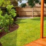 L229 - Palmetto Grass and Garden Edging
