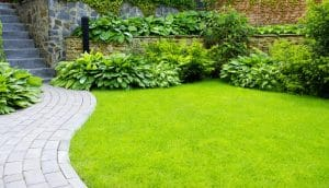 how to create a minimalist garden