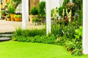 How to make your garden eco friendly
