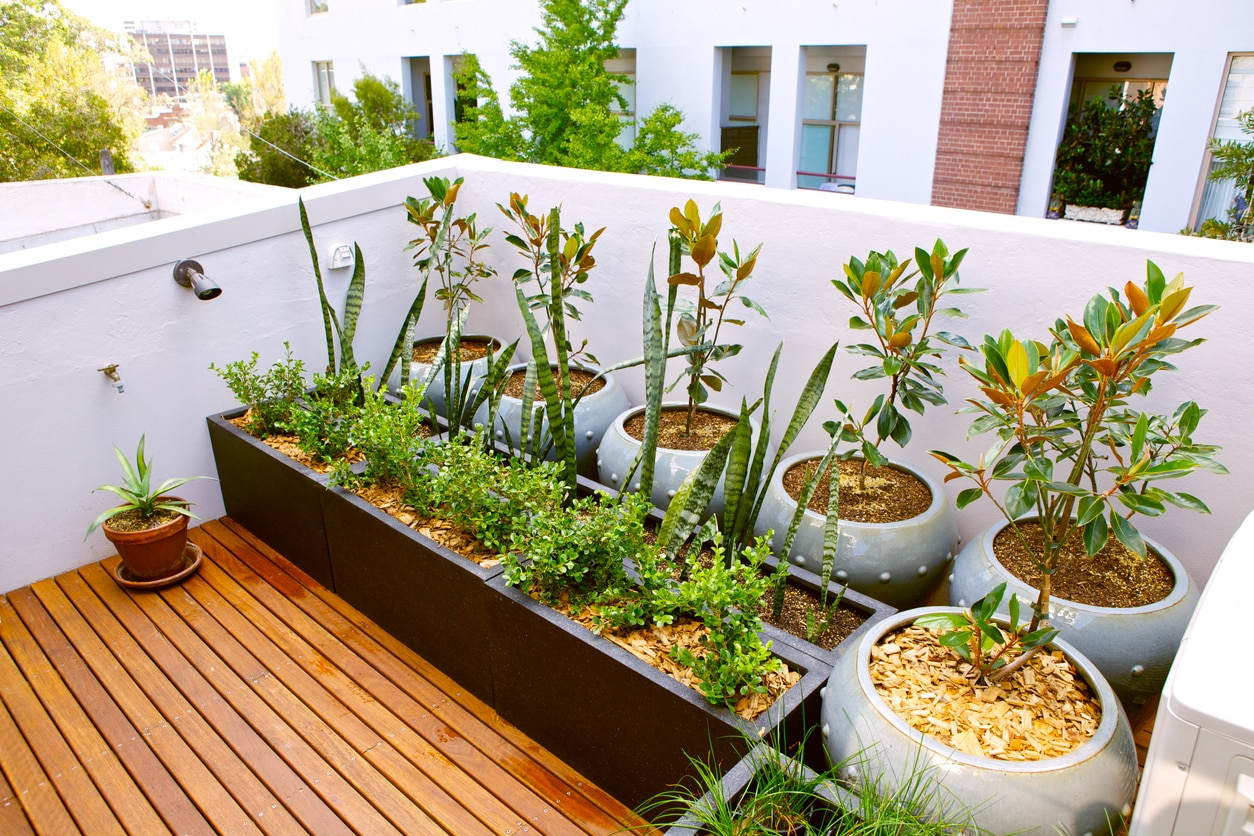 DIY Gardening Ideas for Small Urban Spaces