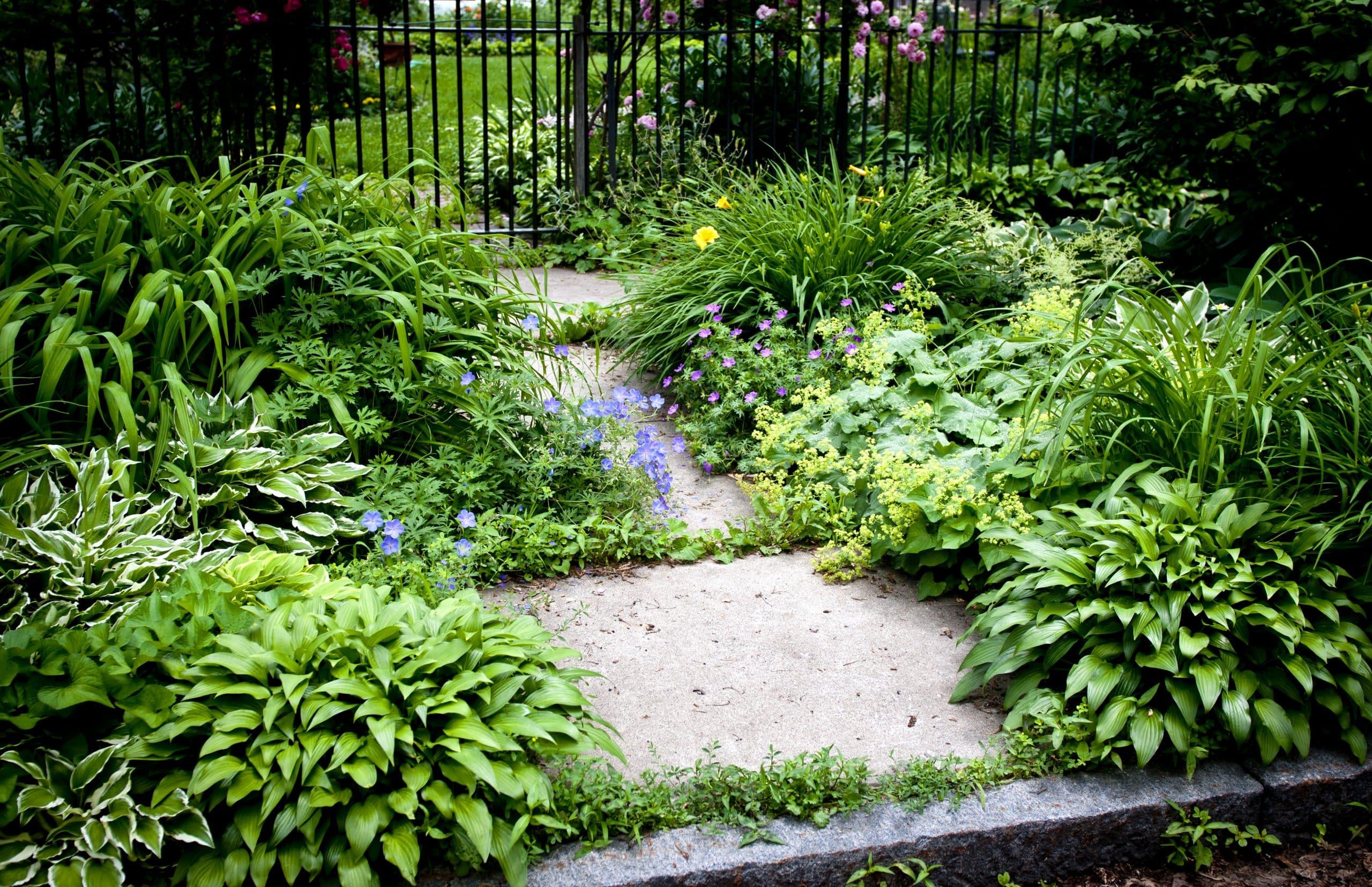 Types of concrete garden edging