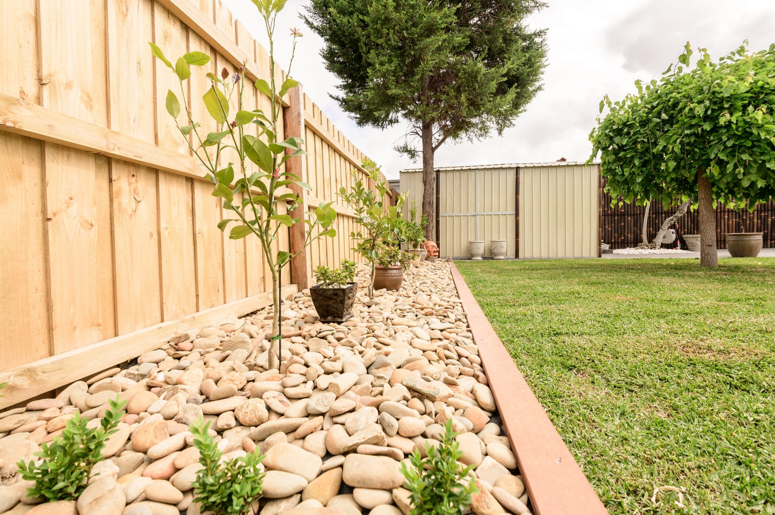 L256 - Ascot Vale - Garden with rocks
