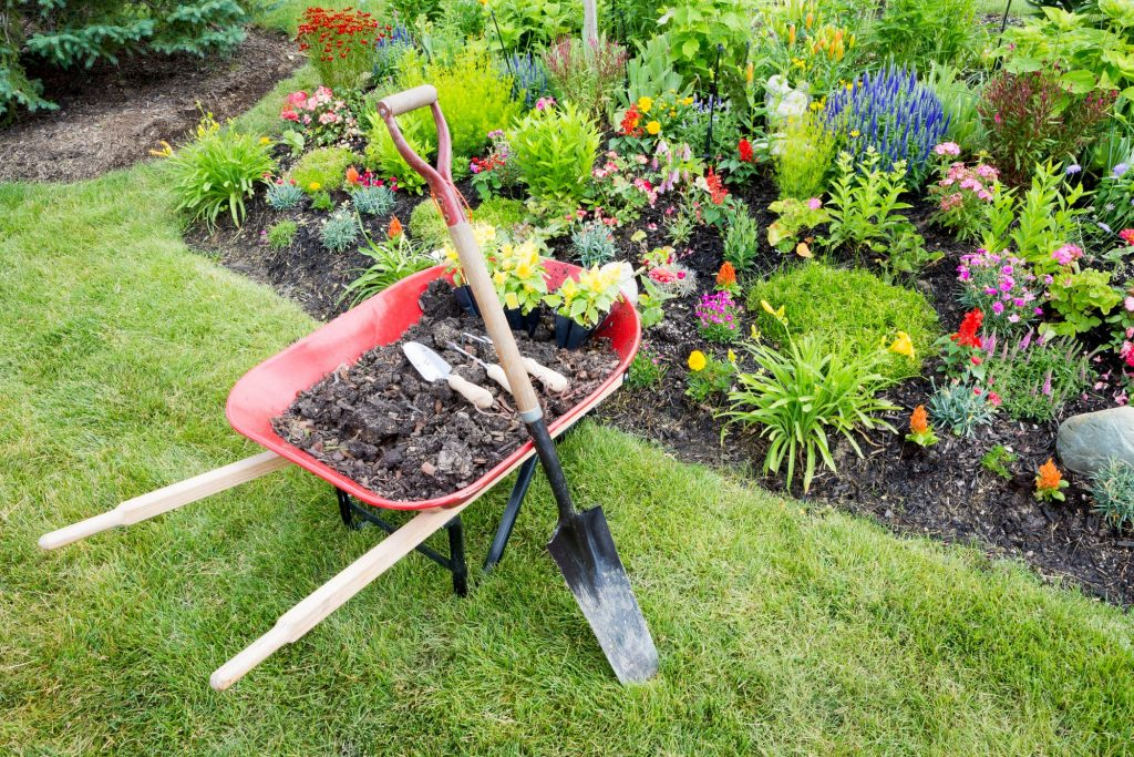 Wheelbarrow and Garden Tools